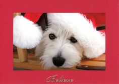 Cool #Go4USA Product… Believe photo insert card - red - horizontal at Plymouth Card Company
