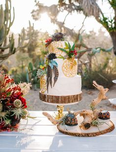 Bohemian dreamcatcher + feather cake