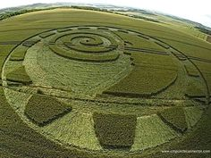 Wiltshire, UK Crop Circle on July 9, 2014