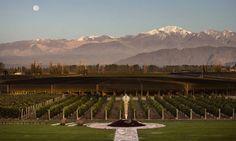 Bodega Norton, Mendoza, Argentina