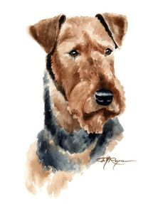 AIREDALE TERRIER Dog Art Print Signed by Artist DJ Rogers