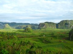 #Viñales Alley Set in a beautiful, lush valley of the Pinar del Río province, it is one of the most visually stunning spots in Cuba. In the heart of Cuba's prime tobacco growing region, Viñales sits quietly surrounded by a number of stunning karst hill formations known as mogotes (pin cushions).