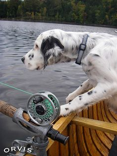 Orvis Fly Fishing Contest - Waiting... | Flickr - Photo Sharing!