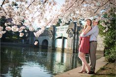 Cherry Blossoms Engagement   Megan   Dave