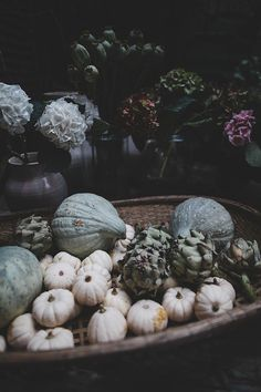with white pumpkins