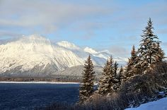 Nautiotter, nautiotterinn, Nauti otter,  glacier, Kenai fjord, kenaifjords, majormarine, Seward cabins, Alaska, Alaskan cabins, fun lodging, unique lodging, hostel, Seward hostel, Alaska hostel, Kenai lake, moose pass