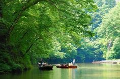 Visit the Geibikei Gorge in the Iwate Prefecture.