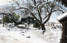 giardino innevato dell' #agriturismo dal quale la visuale delle colline del #monferrato è ottima       the garden in winter of our #resort where the view of #monferrato hills is very good