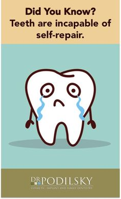 Teeth cannot repair themselves! Give them the support they need. Visit your dentist today.
