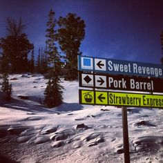 3/31/13: Snowbasin Ski Resort | The kid's took us to Sweet Revenge and they thought it was funny... Stinkers! :-)
