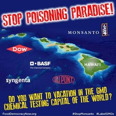 Stop Poisoning Paradise! Help and Take Action Here: http://action.fooddemocracynow.org/go/998?t=1=927.830086.q55G4b