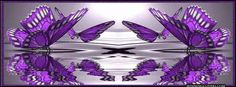 purple the color purple everything purple the best purple cover photos purple monarch on water mirror reflection facebook timeline cover photo banner for fb profile.jpg (851×315)