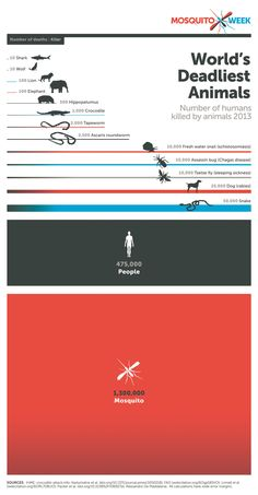 'America's Best Infographics 2015' Is Out Today | Popular Science