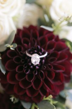 Oval-cut engagement ring: Photography: Amy Rizzuto - http://amyrizzutophotography.com/