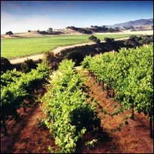 Central Coast | California | Wine Country Travel | Dining and Travel | Wine Spectator