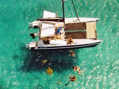 Photos from our Catamaran Cruises, Swimming and Snorkeling with Turtles Sailing Catamaran, Pontoon Boats, Naval, Houseboats, Yacht Design, Sailboats, Barbados, Aerial View, Cruises