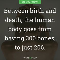 Discover 16 true facts about Human body. Curiosities about Human body that are real, even if they are weird or funny. Human Body Bones, Human Body Facts, Human Tongue, Human Eye, Jamaica Facts, Facts About Humans, Birth And Death, Blood Vessels, True Facts