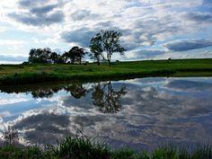 Reflect, Dream, & Believe by Misty Dawn Seidel (Misty DawnS Photography)