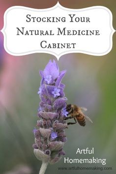 Artful Homemaking: Stocking Your Natural Medicine Cabinet
