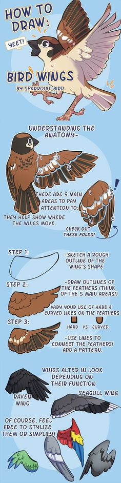How to Draw Bird Wings by SPARROUUSupport the artist on Redbubble! to drawing birds How to Art Drawing Techniques, Drawing Tips, Drawing Sketches, Drawing Ideas, Drawing Stuff, Sketching, Art Reference Poses, Drawing Reference, Design Reference