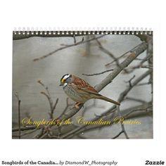 Songbirds of the Canadian Prairies