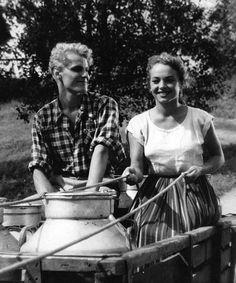 Anneli Sauli ja Saulo Haarla - 'Hilja maitotyttö' 1953 -ohjaus Toivo Särkkä Arctic Fox, Old Movies, Scandinavian Style, Old Photos, Finland, Movie Stars, Actors & Actresses, Acting, Nostalgia