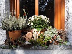 Herbstdeko auf der Fensterbank - Bilder und Fotos