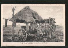 old postcard: AK Artillerie, Verdecktes Geschütz in der Schwarmlinie