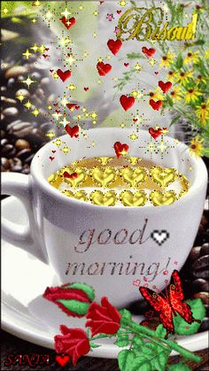 GOOD MORNING  ,sister and all, have a lovely Sturday, .God bless♥★♥.