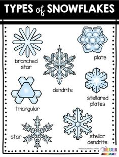 FREE Winter and Snow Activities for kindergarten and first grade - theodora First Grade Science, Kindergarten Science, Snow Activities, Science Activities, Visual Motor Activities, Winter Fun, Winter Theme, Winter Ideas, Snowflake Bentley