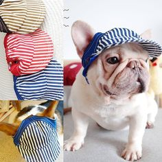Stripe Sunny Dog Baseball Cap Small Medium Large Animal Pet French Bulldog Terrier Schnauzer Hat For Cat Puppy Hair Accessories Large Animals, Large Dogs, Baseball Cap, Puppy Love, Chihuahua, Funny Animals, Your Dog, Dog Lovers, Terrier