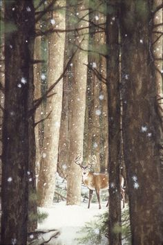 Illustration of Deer in Snow-Covered Forest | via moonandtrees.tumblr.com