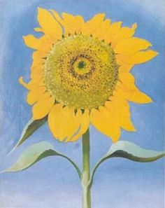 Image detail for -Sunflower, New Mexico, 1935 by Georgia O'Keeffe Art Print ...