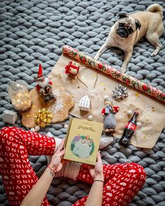 Hashtag Sisters, I Love Dogs, Cute Dogs, Christmas Post, Pugs, Celebrity, Winter, Youtube, Instagram