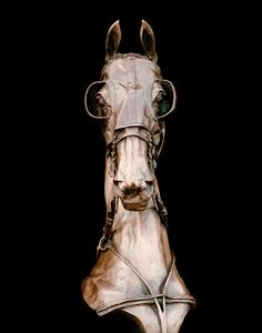 Two Year Old Fine Harness Sculpture by Alexa King. The utter fineness of this move me.