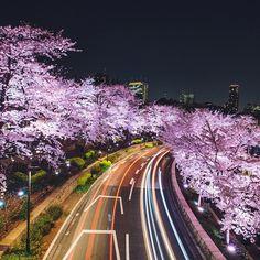 Instagrams by Hiroaki Fukuda