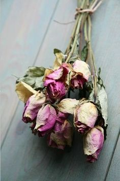 ✨Dried Roses✨