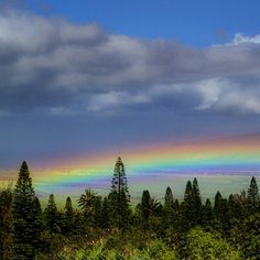 Maui rainbow off the deck - by Mike Neal
