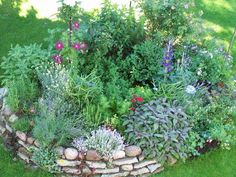 Herb beds - Page 1 - Garden practice - My beautiful garden online Herb Garden Design, Modern Garden Design, Garden Types, Gardening For Beginners, Gardening Tips, Garden Forum, Garden Online, Formal Gardens, Natural Garden