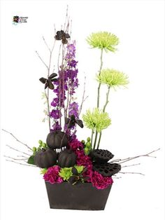 Get into the spooky spirit with flowers! This eerie carpet of purple carnations and green button poms brings the Halloween spirit into any household! #halloween #halloweenflowers Flower Shop Network, Purple Carnations, Spider Mums, Halloween Flowers, Birch Branches, Local Florist, Green Button, Flower Pictures, Pumpkin Decorating