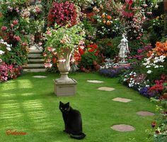 Wow...would love to spend a few minutes in this garden petting that kitty.