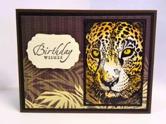 Birthday Wishes by mum2twinboys13 - Cards and Paper Crafts at Splitcoaststampers King Birthday, Male Birthday, Safari Animals, Wild Animals, Birthday Wishes Cards, Boy Cards, Animal Cards, Hero Arts, Card Kit