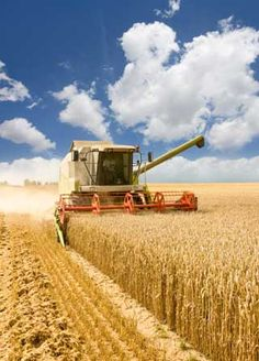 Modernly Combining The Field---we didn't have this technology when I was a child.