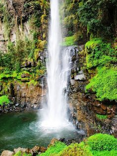 Beautiful waterfall in a densly forested area National Landmarks, Mountain Photos, Beautiful Places, Beautiful Scenery, Beautiful Waterfalls, State Parks, Places To See, South Africa, Tourism