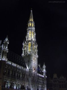 Brussels City Hall at night ( 480x640 )