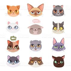 Cats vector heads illustration royalty-free cats vector heads illustration stock vector art & more images of domestic cat