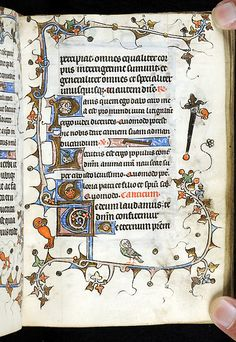 Book of Hours, MS M.754 fol. 31r - Images from Medieval and Renaissance Manuscripts - The Morgan Library & Museum