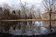The Bloody Pond at Shiloh Battlefield in Tennessee- this shallow pond attracted the weary and wounded soldiers of both armies who where engaged in heavy fighting nearby. Some crawled here for their last drink. Observers after the battle reported that the pond was littered with dead soldiers and horses, and many died here.