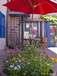 It is patio time at the Adobe Bar - Taos Inn! Free Live music Nightly and Award Winning Margaritas!