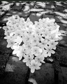 Beautiful heart of flowers. I Love Heart, With All My Heart, Happy Heart, Love Is All, Peace And Love, Humble Heart, Heart In Nature, Heart Art, Jar Of Hearts